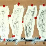 diane-croquis-2-65x50.jpg